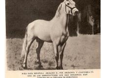 BILBAINO III (2)